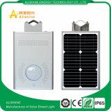 12W imperméabilisent IP65 ont intégré tous dans un réverbère solaire de DEL