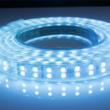 2 años de la garantía del color 5050RGB/120LEDs ETL 110/220V de lámpara de calle cambiable