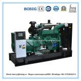generador eléctrico diesel de 24kw Weifang Ricardo Genset