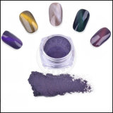 3D Cat의 Eye Magnetic Effect Powder Gel Polish Chameleon Pigment
