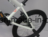 20 인치 최신 판매 BMX Bicycle/BMX Bike/Sy-Bm20119