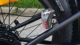 En 15194는 뚱뚱한 타이어를 가진 강한 강력한 500W-750W 모터 바닷가 함 E 자전거를 승인했다