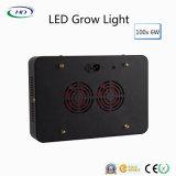 Schwarzes Gehäuse 100PCS*6W LED wachsen für Hydroponik-Systems-Wachstum hell