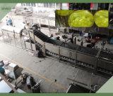 De Groente van het Roestvrij staal SUS 304 en de Transportband van het Fruit