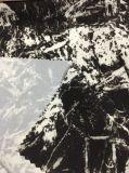 Tela do Pongee do poliéster da impressão do estiramento para ternos de esqui
