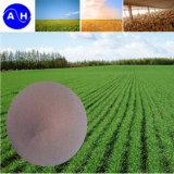 Amminoacido chelatato del ferro per agricoltura