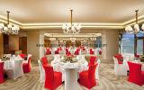 결혼식 호텔과 연회를 위한 백색 스판덱스 의자 덮개