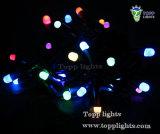 luz de la cadena de la ampolla de 220V/110V LED