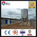 Camada de alta qualidade chinesa e frangos de corte House/ Equipamento de aves um Stop Service (XGZ-GR022)