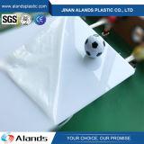 Hojas de acrílico del plástico del molde PMMA