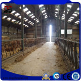 Galvanized modular Steel Light Structure Poultry House