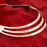 여자 계산서 목걸이 매력 형식 금 색깔 숨막히게 하는 것 목걸이
