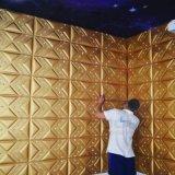 벽 & 천장 훈장 1115를 위한 새로운 디자인 3D 벽면