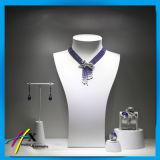 De acryl Tribune van de Vertoning van het Lichaam Doordringende voor Juwelen met het Embleem van het Merk