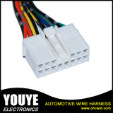 Coaxial Cable Assembly Asamblea del haz de cables de alambre