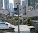 Haut de la qualité Design magnifique rue lumière galvanisé Pole fabricant