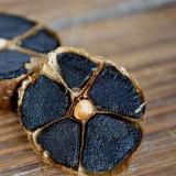 Garklic noir âgé fermenté pour faire cuire l'usage