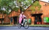 MEDIADOS DE bici eléctrica de la ciudad de la potencia 700c para las mujeres