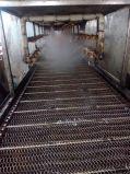 Pellicole di stampa di trasferimento dell'acqua di Camo del foglio per i punti esterni (BDE32)