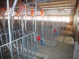 家畜の解決のためのチェーンコンベヤのブタの送り装置