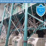 중국 자동 완전한 밀 축융기 (200tpd)를 맷돌로 가는 최신 판매 밀