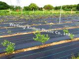 Estrutura do Bloco de plantas daninhas de agricultura e da paisagem