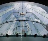 Gute Qualitätsgroßes ausgeglichenes Glas für Apple Store-Zwischenwand