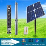 Agriculture를 위한 Quality 높은 DC Submersible Water Solar Pumps