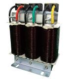 Железный сердечник Cksg три этапа фильтр низкого напряжения серийный реактора