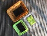 Eco freundliches biodegradierbares WegwerfThermoforming Schaumgummi-Fleisch-Nahrungsmitteltellersegment-Verpacken