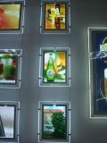 Piccola visualizzazione di cristallo decorativa eccellente del LED