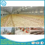 Condizionatore d'aria di raffreddamento del rilievo per la Camera del pollame