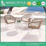 Do clube de vime de vime do jogo de café do Rattan pátio ao ar livre ajustado da mobília do projeto do hotel da mesa de centro da mobília que janta a cadeira (estilo mágico)