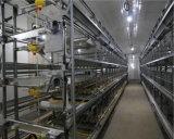 Тип автоматические клетки h высокого качества слоя батареи