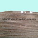 Möbel-Verbrauch des Kiefer-Kern-Block-Vorstand-1220X2440mm