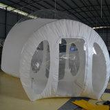Inflables carpas carpas translúcido transparente