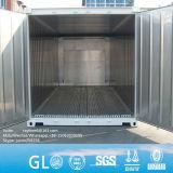 20 ft nouveau Reefer/conteneurs de transport réfrigéré à Qingdao pour la vente