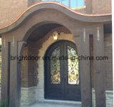 Diseño labrado del tubo principal del hierro barato de la puerta principal