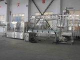 Máquina de rellenar de fruta Rxgf40-40-12 del SGS del agua automática llena del zumo
