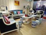 Neues Ankunfts-Amerika-Art-Leder-Sofa für Hauptmöbel (6011#)