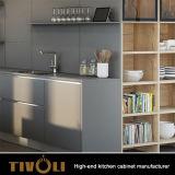 Mordenデザインのアパートのための最もよく新しい食器棚デザイン