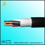 Câble de contrôle solide isolé en PVC (KVV KVVR KVVP KVVRP)