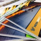 Scheda di plastica personalizzata di Coreflute di stampa di marchio, stampa di Digitahi della scheda di Corex