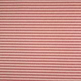 [75د75د150د] [بولستر رن] يصبغ شريط جاكار بناء لأنّ لباس داخليّ