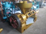Máquina da imprensa de petróleo do feijão de soja de Guangxin 400kg/H
