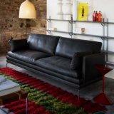 Sofà di cuoio dell'Italia della mobilia domestica moderna (L019)