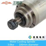 motore raffreddato ad acqua standard dell'asse di rotazione di CNC del Ce di 3kw 24000rpm