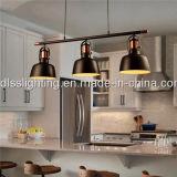 가정 점화를 위한 간단한 작풍 유리제 백색 거는 램프