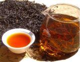 Extrait de thé noir pour supplément et boisson