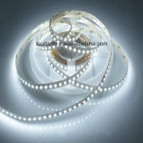 Il LED bianco mette a nudo 2835 con 120LEDs/M 12V